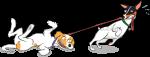 Diseño de mascotas para identifica2.com
